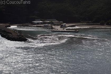 le tourbillon dans la baie beaucou plus impressionnant qu'au dernier tsunami