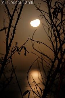 Lever de Lune dans la Baie de Hakahau
