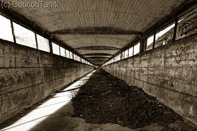 Les fameuses galeries où les tapis roulants remontaient le charbon
