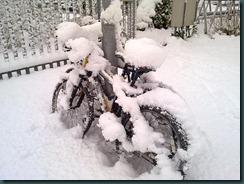 snow day 030