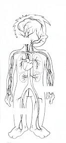 circulatorio 1.JPG