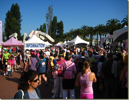 Race for the Cure 229