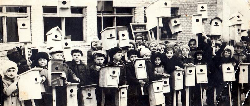 День птиц 1972
