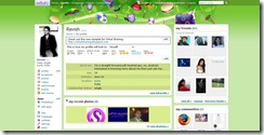 carnaval_theme_orkut_3