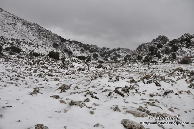 Circular nevada Grazalema - Llanos del Endrinal - Puerto de las Presillas - Puerto del Boyar