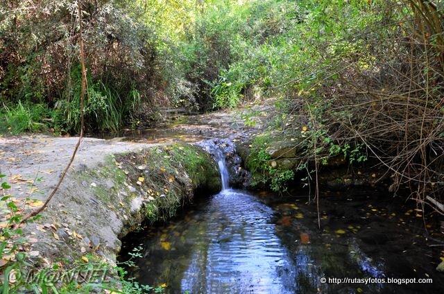Parauta - Cartajima - Igualeja