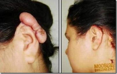 Piercings&alargadores (23)