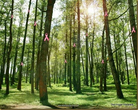 forest-wallpaper-1