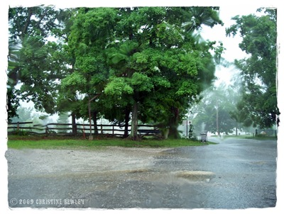 Huntsville Store parking lot...in the rain.