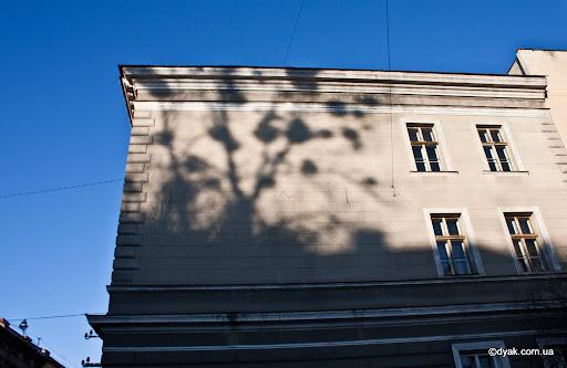 Львівські тіні