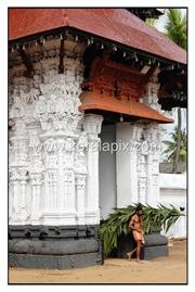 TPRA_011_DSC0062_www.keralapix.com_kerala