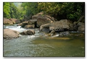 TMKH_076_thommankuth_kerala_keralapix.com_DSC0490