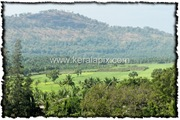 PLKD_011_www.keralapix.com_DSC0018