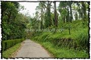 NLPY_015_www.keralapix.com_DSC0056