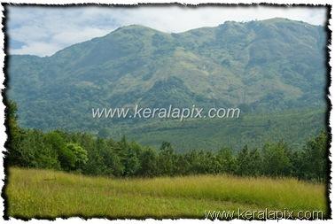 NLPY_038_www.keralapix.com_DSC0103