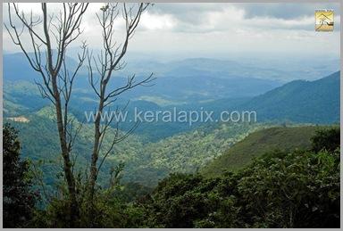 PMDY_001_keralapix.com_ponmudi_keral