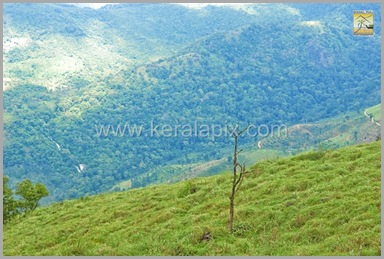 PMDY_008_keralapix.com_ponmudi_keral