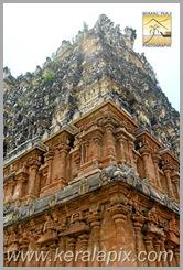 PSTT_013_Padmanabhaswamy_Temple_kera
