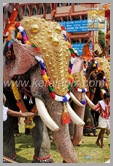 TPM_146_trichur_pooram_kerala_DSC_00