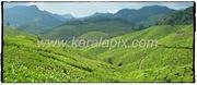 MNR_232_www.keralapix.com_DSC0270_DSC0271