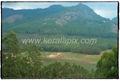 MNR_290_www.keralapix.com_DSC0296