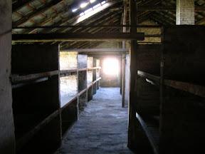 164 - Auschwitz II - Birkenau, interior de un barracón de piedra.JPG