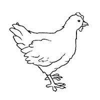 Aves (50).jpg