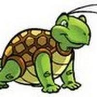 Reptiles (33).jpg