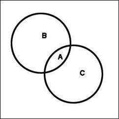 Euler-harris-2