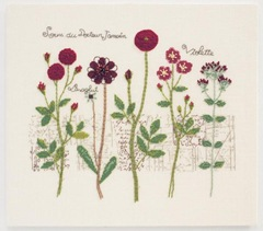 Pressed Red Flowers