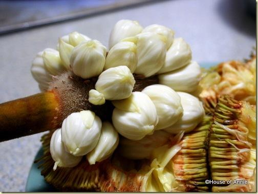 buah tarap fruit 2