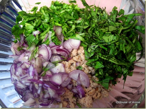 shallots cilantro basil and pork for larb