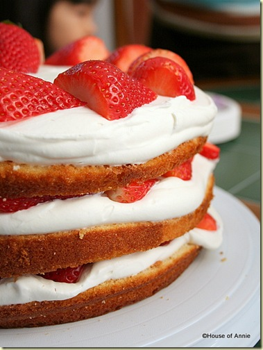 Round Layer Cake with Whipped Cream and Strawberries