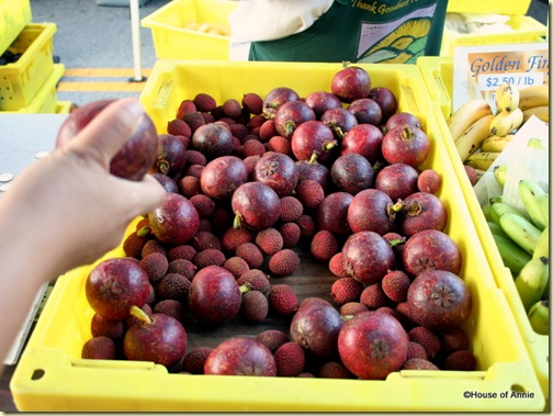 Mangosteens and Lychee at the San Carlos Farmer's Market