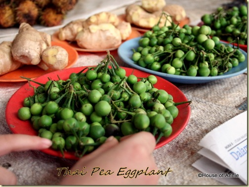 Thai Pea Eggplants
