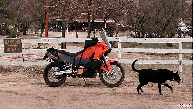 Dual Purpose Bikes   (7)