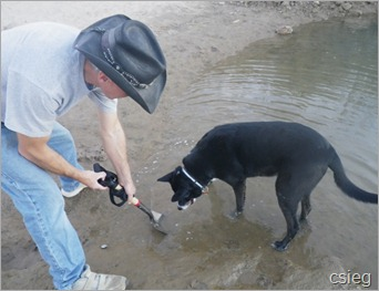 Detecting Dog Bridge 01