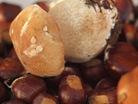 Kastanjes en eekhoorntjesbrood
