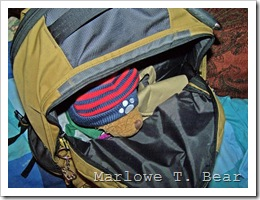 tn_2009-10-17 Marlowe Out of Traveling Bag (3)_edited-1