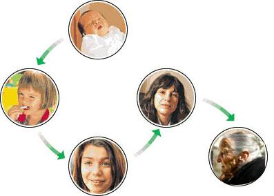 Distintas etapas de la adolescencia - Euroresidentes