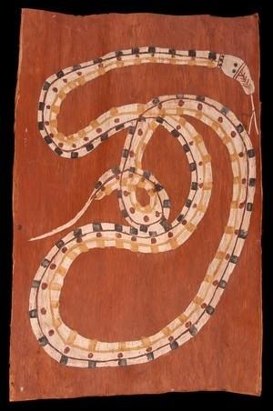 Python des roches - Midjau-Midjawu