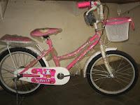 Sepeda Mini EVERGREEN 20AP PENGUIN 20 Inci