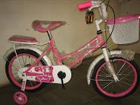 Sepeda Anak EVERGREEN 16AP PENGUIN