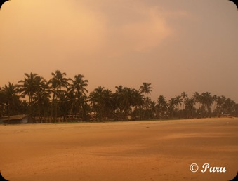 Goa - Close to sunset