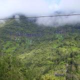 Überall läuft das Wasser vom Regenwald ab