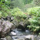 Überall fließen Bäche mit trinkbarem Wasser