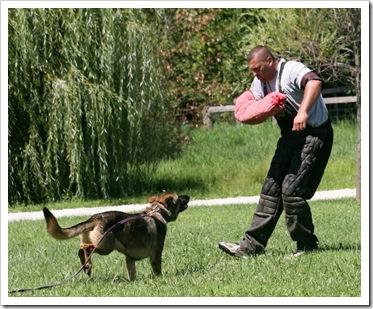 2010.8.15 Training Steve Beal-22