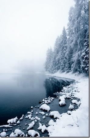 akiranuse nieve