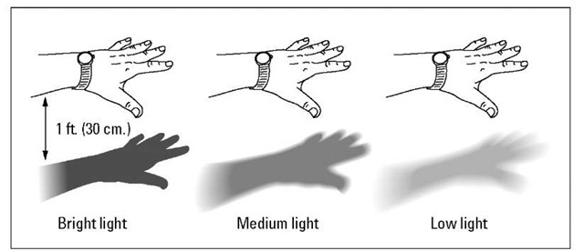 The shadow test is a simple and reasonably accurate way to measure light intensity.