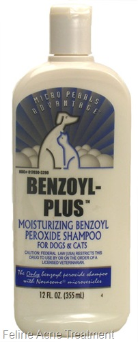benzoyl peroxide shampoo for cats and dogs
